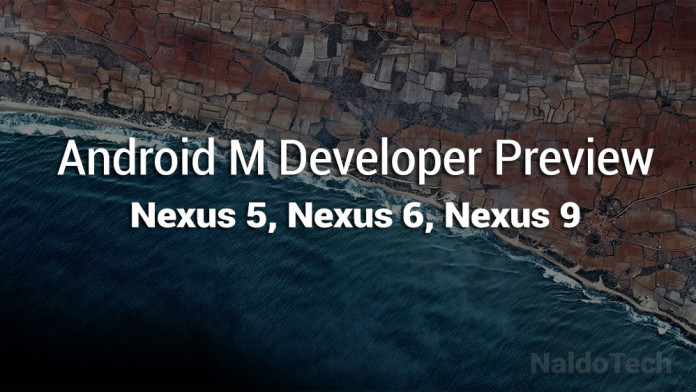 nexus android 5 developer preview