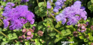 iphone 6s galaxy s6 camera