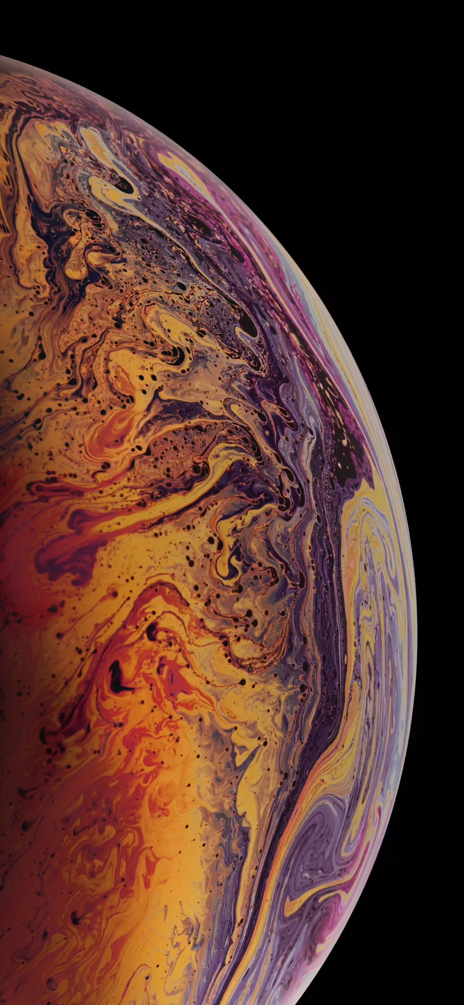 Download All New Iphone Xs Xs Max Xr Wallpapers Live Wallpapers